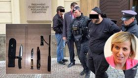 Těhotnou poslankyni Vildumetzovou vyděsil útočník s nožem, který se snažil dostat do Sněmovny ve čtvrtek dopoledne.