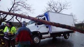 Velké štěstí měla posádka dodávky na Mladoboleslavsku. Na vůz spadl strom, incident se obešel bez zranění.