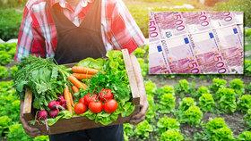 Česko dluží Evropské komisi přes miliardu korun. Pochybilo v zemědělských dotacích, nyní žádá smírčí řízení
