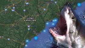 Aplikace Shark Tracker zaznamenala hromadění lidožravých žraloků u břehů států Severní a Jižní Karolína.