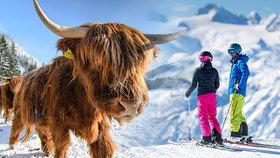 Kam na parádní lyžovačku ve Štýrsku?
