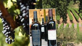 Cena vína rapidně klesá, hroznů je nadbytek. V USA se snižuje počet konzumentů vína.