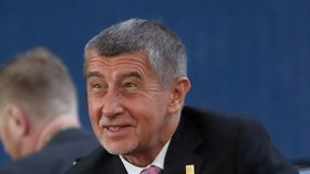 Andrej Babiš (ANO) na Evropském summitu.
