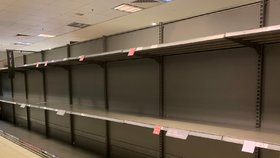Panice propadli i Britové. Ze supermarketů mizí hygienické potřeby a trvanlivé potraviny. (9.3.2020)