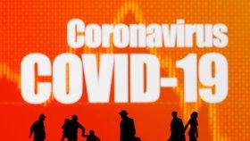 Nový koronavirus.