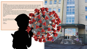 Gynekologicko-porodnické oddělení nemocnice ve Frýdku-Místku bylo zavřené kvůli nakažené sestřičce.