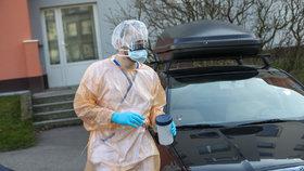 Testování na koronavirus zajišťuje i pražská Bulovka.