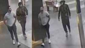 Nenechavci ukradli na více místech v Sydney celkem 500 kusů toaletního papíru.
