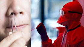 Vědci tvrdí, že by koronavirus mohl poničit čich.