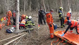Na dva muže na Zlínsku spadly stromy.