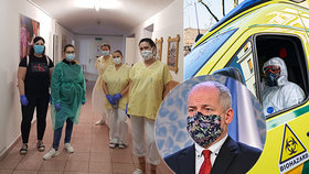 Epidemiolog Roman Prymula prozradil, že by se v Česku i další pacienti mohli léčit Remdesivirem. (4. 4. 2020)