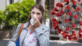 Alergici jsou ohroženi koronavirem. (Ilustrační foto)