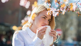 Jarní a letní alergie: Jak je udržet pod kontrolou?