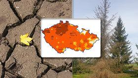 Česko opět trápí sucho. (19. 4. 2020)