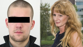 Policie zadržela v Irsku údajného vraha Jany Svobodové: Proti vydání se hodlá bránit.
