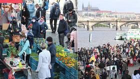 Na náplavce jsou opět v provozu po dočasném uzavření farmářské trhy. (25. dubna 2020)
