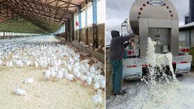 USA se řítí do potravinové krize. Farmáři mají problém s odbytem i nedostatkem pracovních sil.