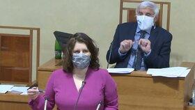 Senát o koronaviru: Ministryně Jana Maláčová (ČSSD) přišla hájit navýšení ošetřovného. (29.4.2020)