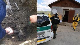Rozsáhlá policejní akce Kamiben: Erik měl zavraždit svou manželku.