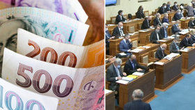 Senát chce jiný zdroj peněz pro výplatu příspěvku OSVČ.