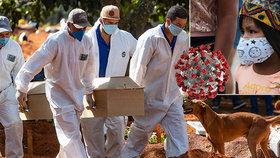 Koronavirus má nové epicentrum: Jižní Amerika hlásí ke konci května 50 tisíc mrtvých