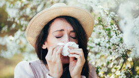 Pylová alergie dokáže znepříjemnit život. Víme, jak s ní účinně bojovat!