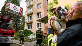 Požár bytu v Liberci, hasiči zachránili psa.