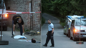Policie u incidentu v Milovicích.