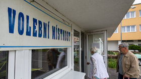 Na Teplicku se konají doplňovací volby do Senátu. O mandát po Jaroslavu Kuberovi usiluje devět kandidátů (5.6.2020)