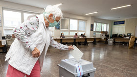 Na Teplicku se konaly doplňovací volby do Senátu. O mandát po Jaroslavu Kuberovi usilovalo devět kandidátů. (5.6.2020)