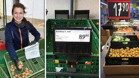 Do obchodů míří rané brambory (6. 6. 2020).