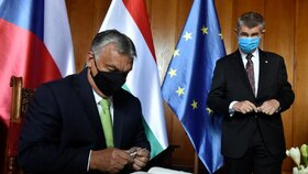 Premiéři zemí V4 se setkali v Lednici (11. 6. 2020)