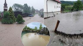 Nedělní bouřky a přívalové deště v Česku vydatně zasáhly třeba obec Počítky nebo bazén lachtanů v Zoo Praha.