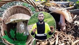Tak to vypadá, když nejdete na houby, ale na houbu.