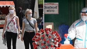 Češi mají opatření vlády proti viru za dostatečná. Neuspěla EU ani WHO, ukázal výzkum.