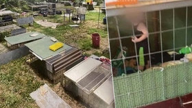 Hrůzný nález policie: Při zátahu kvůli týrání zvířat našla v kleci zavřeného chlapce (18 měs.)!