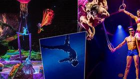 Nejslavnější cirkusová společnost světa Cirque du Soleil zbankrotovala.