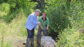 Ministr životního prostředí Richard Brabec (ANO) během vypouštění raků kamenáčů (2.7.2020)
