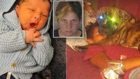 Miminko roztrhal agresivní pitbul. Jeho matku zatkli za zanedbání péče.