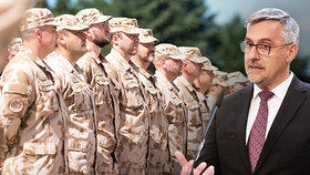 Česká vláda posílá vojáky na pomoc.