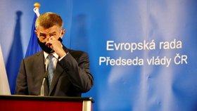Premiér Andrej Babiš na summitu v Bruselu