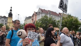 Lidé v Ostravě protestují proti chaotickému informování o koronaviru. (20.7.2020)