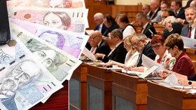 Senát schválil náhrady 350 Kč za den pracovníkům na dohody.
