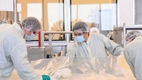 Na výzkumu koronaviru se podílejí vědci z celého světa včetně Austrálie.