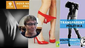 Organizace Nesehnutí za podpory bývalé ombudsmanky Anny Šabatové kritizuje politické sexistické reklamy.