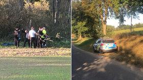 Neštěstí na Benešovsku: Žena zemřela při kácení stromů.