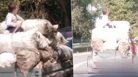 Malý chlapec jel na přívěsu na pytlích brambor. Hrozilo mu přitom smrtelné nebezpečí.