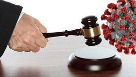 Soud v N. Jičíně uložil ženě za porušení karantény podmíněný trest (ilustrační foto)