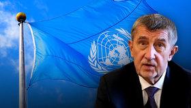 Babiš na shromáždění OSN kritizoval WHO a volal po zlepšení spolupráce zemí světa