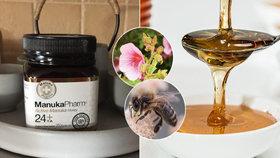 Manukový med je mezi lidmi stále oblíbenější. Ale opravdu je lepší?